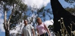 Heart Foundation Walking Richmond Leggers