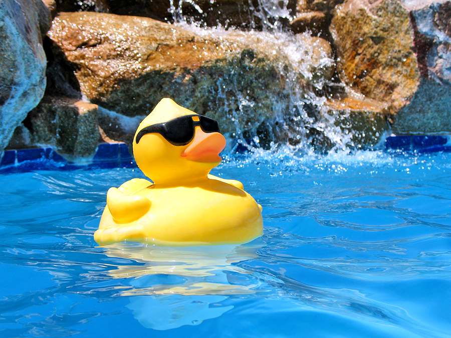 Pool Party Merrigum Active In Parks