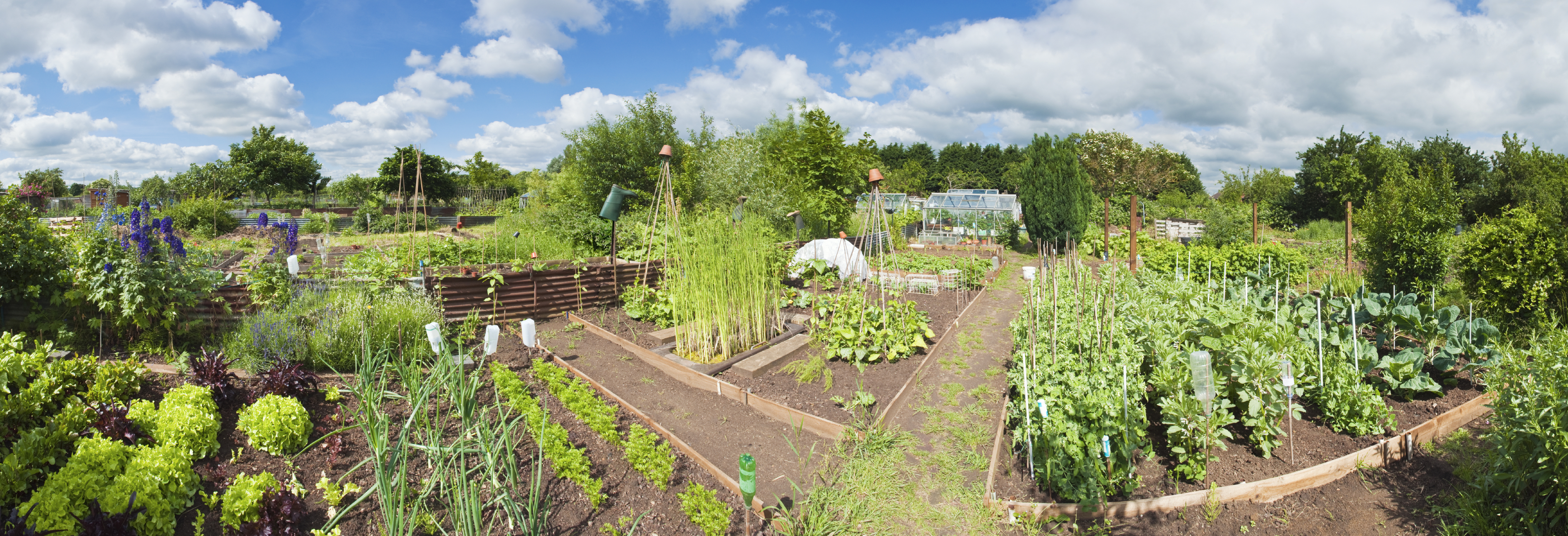 Parks Week 2016 Community Garden Open Day Sale Active