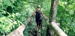 forestbathing