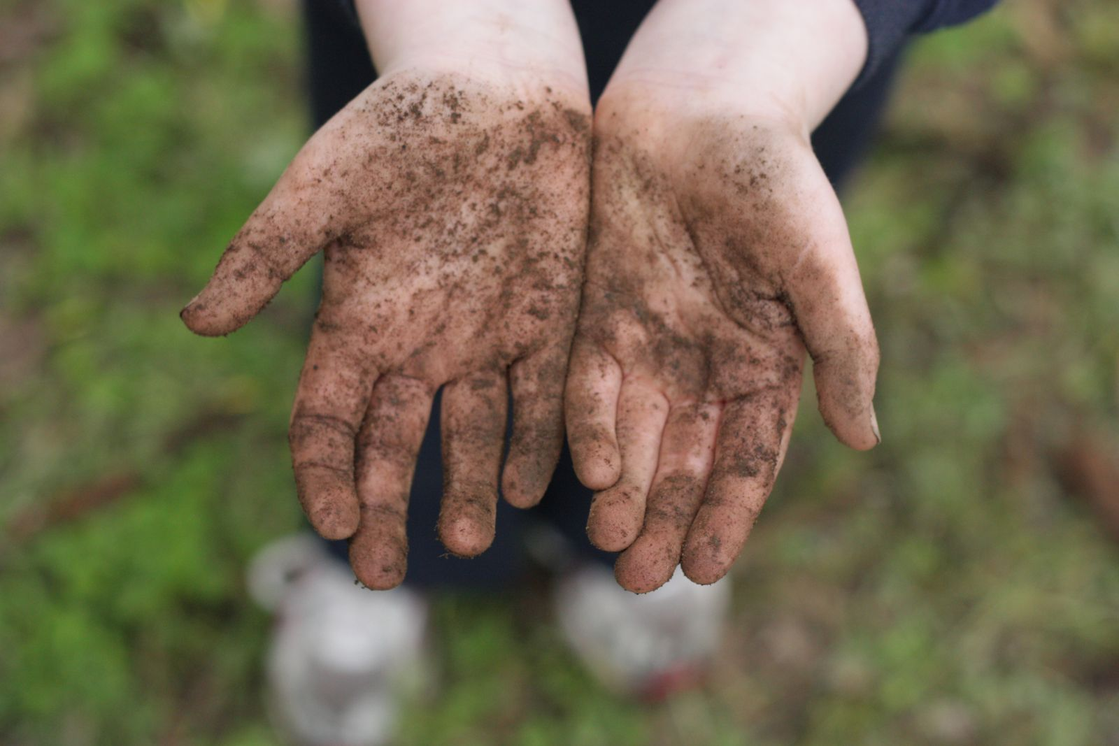 the problem of dirty hands While the dirty hands problem can only really be a problem if values are plural, it is not itself the problem of value pluralism or moral dilemmas, just one such problem.