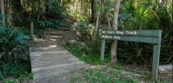 Mt Keira Ring Track, Illawarra Escarpment State Conservation Area