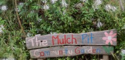 The Mulch Pit