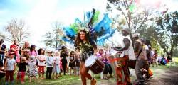 Darebin Kite and Arts Festival-7-14 (A3598544)