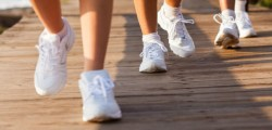 Heart Foundation Walking Groups – Maitland NSW