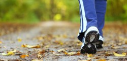 Heart Foundation Walking Groups – Glenfield NSW